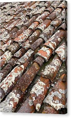 Terra Cotta Roof Tiles Canvas Print by Gaspar Avila
