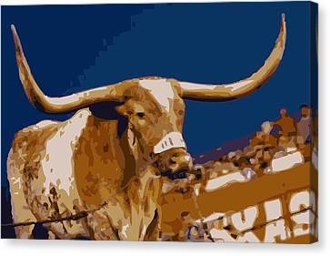 Texas Bevo Color 16 Canvas Print by Scott Kelley