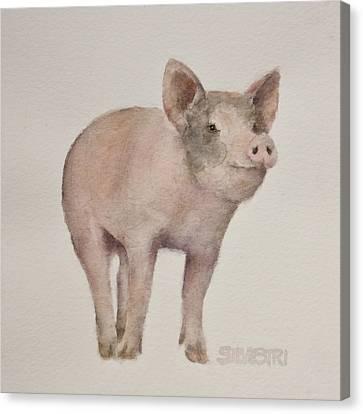 That's Some Pig Canvas Print by Teresa Silvestri