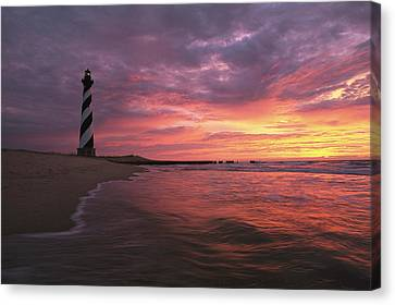 The 198-foot Tall Canvas Print by Steve Winter