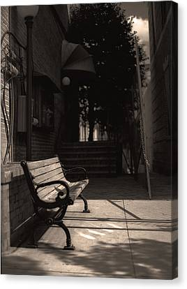 The Alleyway Canvas Print by Ayesha  Lakes