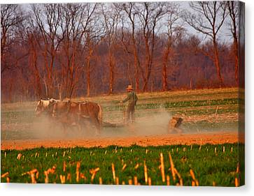 The Amish Way Canvas Print by Scott Mahon