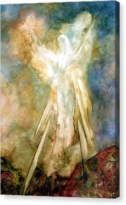 The Appearance Canvas Print by Marina Petro