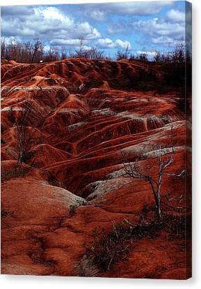 The Badlands Canvas Print by Cabral Stock