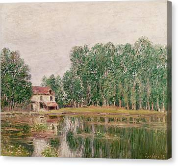 The Banks Of The Canal At Moret Sur Loing Canvas Print by Alfred Sisley