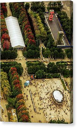 The Bean From Aboove Canvas Print by Andrew Soundarajan