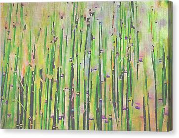 The Beauty Of A Bamboo Fence Canvas Print by Angela A Stanton