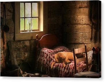 The Bed Warmer Canvas Print by Lori Deiter