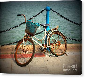 The Bicycle Canvas Print by Carol Groenen