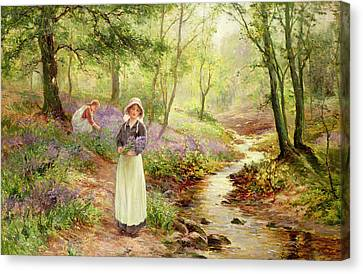 The Bluebell Glade Canvas Print by Ernest Walbourn