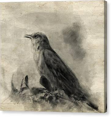 The Call Of The Mockingbird Canvas Print by Jai Johnson
