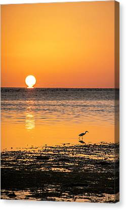 The Calm Side Canvas Print by Marvin Spates