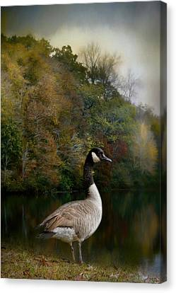 The Canadian Goose Canvas Print by Jai Johnson