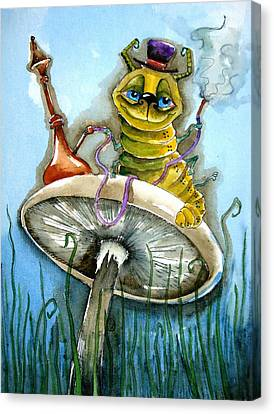 The Caterpillar Canvas Print by Lucia Stewart