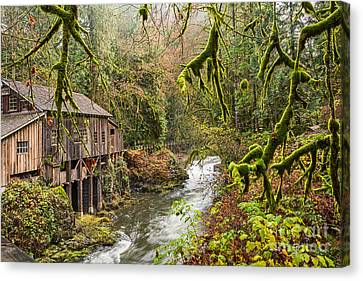 The Cedar Creek Grist Mill In Washington State. Canvas Print by Jamie Pham