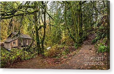 The Cedar Creek Grist Mill Trail Canvas Print by Jamie Pham