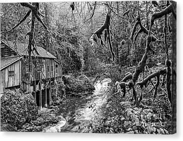 The Cedar Creek Mill Moss Canvas Print by Jamie Pham