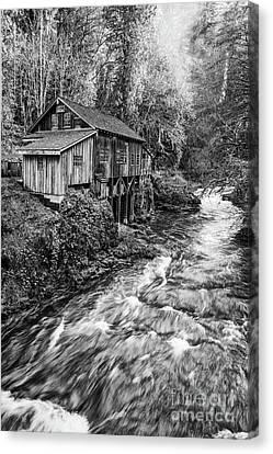 The Cedar Mill And Creek Canvas Print by Jamie Pham