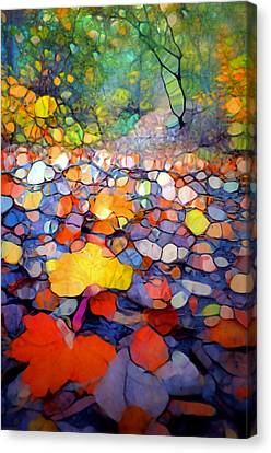 The Colours Of The Forest Floor Canvas Print by Tara Turner