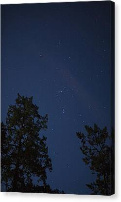 The Constellation Orion At Night Canvas Print by Taylor S. Kennedy