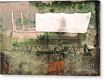The Covered Wagon  Canvas Print by Steven  Digman