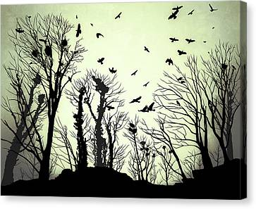 The Crows Roost - Evening Shades Canvas Print by Philip Openshaw