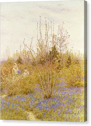 The Cuckoo Canvas Print by Helen Allingham