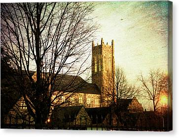 The Dawning  Canvas Print by Suzanne Barber