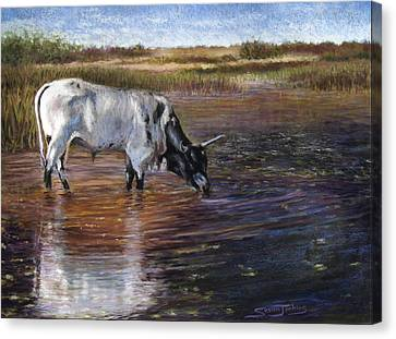 The Drink Canvas Print by Susan Jenkins