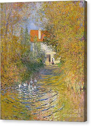 The Duck Pond Canvas Print by Claude Monet