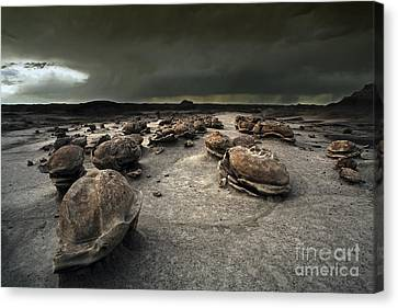 The Egg Factory - Bisti Badlands Canvas Print by Keith Kapple