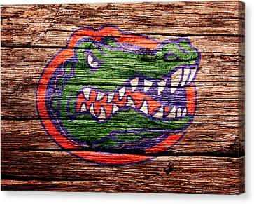 The Florida Gators 1a Canvas Print by Brian Reaves