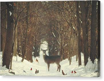 The Forest Of Snow White Canvas Print by Carrie Ann Grippo-Pike