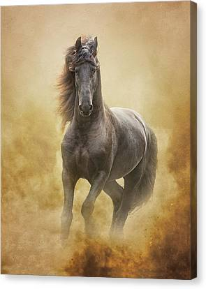 The Friesian King Canvas Print by Ron  McGinnis