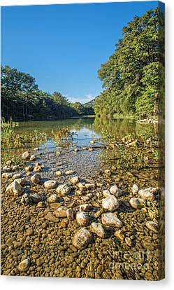 The Frio River In Texas Canvas Print by Andre Babiak