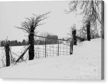 The Frozen Gate Black And White Canvas Print by Cathy  Beharriell