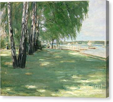 The Garden Of The Artist In Wannsee Canvas Print by Max Liebermann