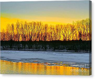 The Golden Pond Canvas Print by Robert Pearson