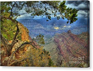 The Grand Canyon View Canvas Print by K D Graves