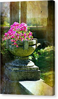 The Grecian Urn Canvas Print by Diana Angstadt