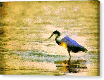 The Herons Canvas Print by Odon Czintos