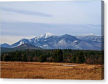 The High Peaks Canvas Print by Heather Allen