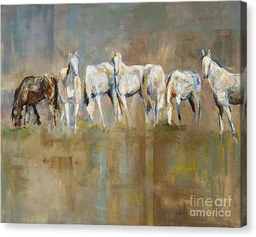 The Horizon Line Canvas Print by Frances Marino