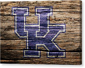 The Kentucky Wildcats  Canvas Print by Brian Reaves
