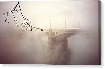 The Last Red Leaf Canvas Print by Jaroslaw Blaminsky