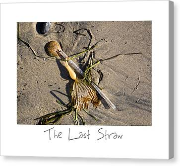 The Last Straw Canvas Print by Peter Tellone