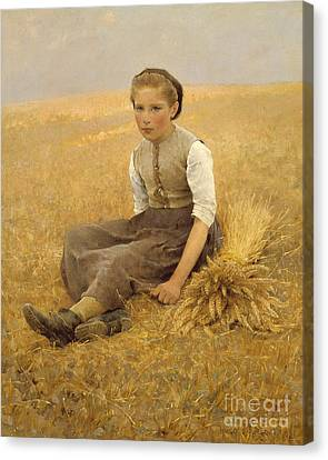 The Little Gleaner, 1884 Canvas Print by Hugo Salmson