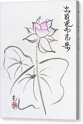 The Lotus Rises Out Of Muddy Waters Untainted Canvas Print by Oiyee At Oystudio
