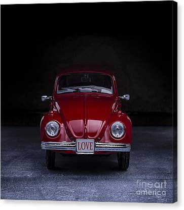 The Love Bug Square Canvas Print by Edward Fielding