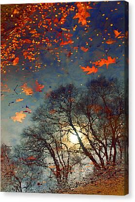The Magic Puddle Canvas Print by Tara Turner